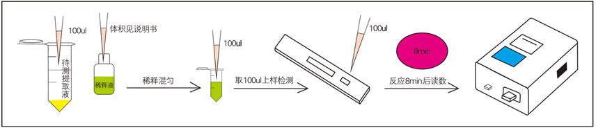 生物素(VB7)荧光定量快速检测试纸条样品检测